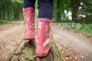 blog_27