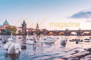 blog_121