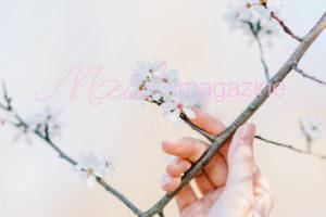 blog_m10