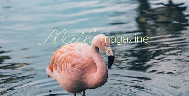 blog_m11