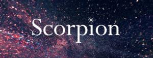 scorpion_logo_image