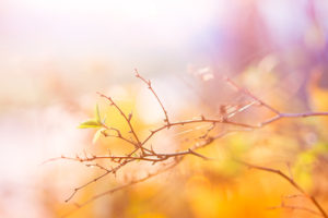 blog_43
