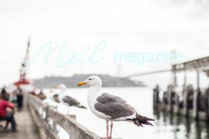 blog_47