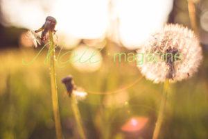 blog_122
